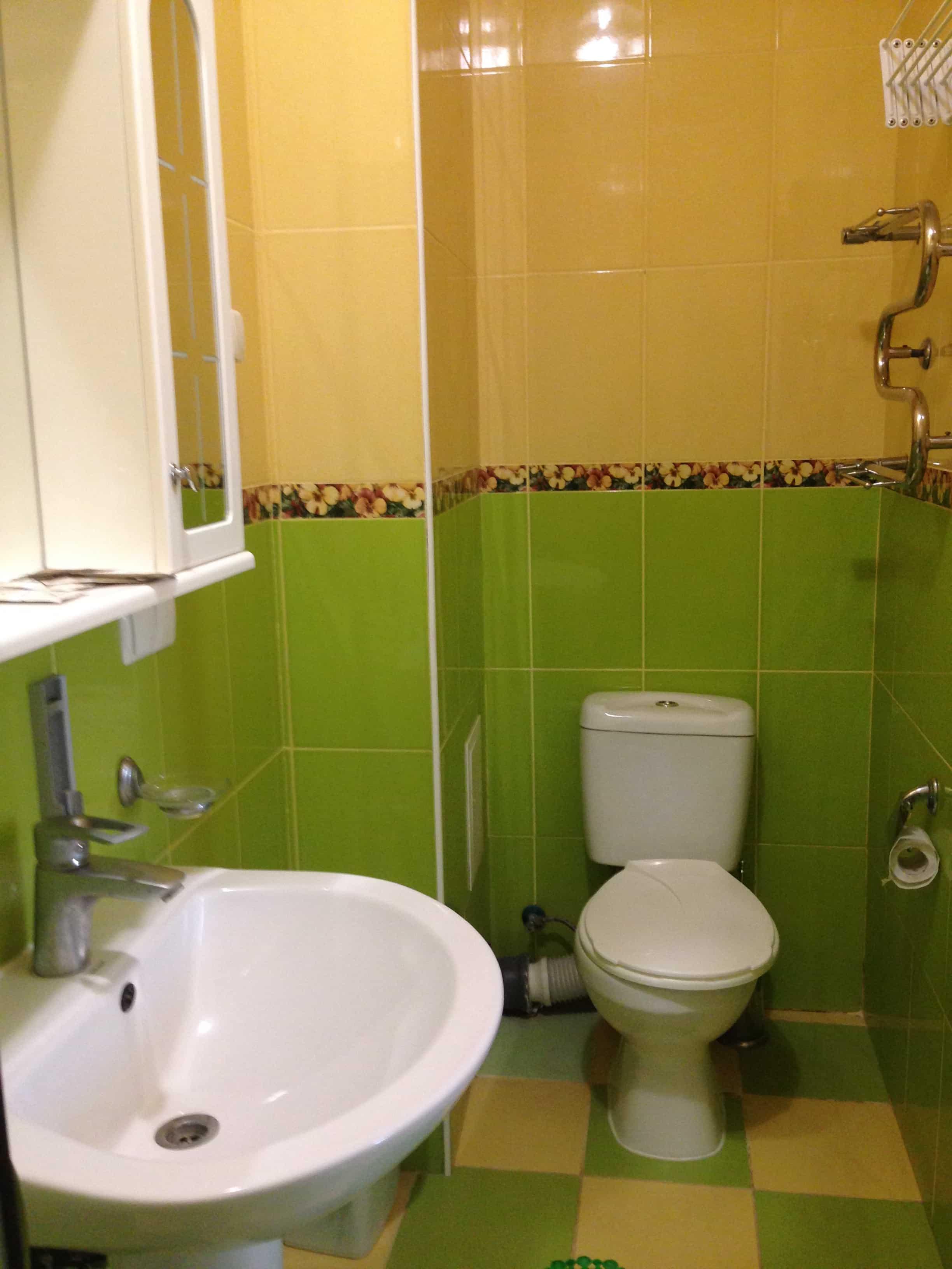 душевая и туалет в трехместном номере