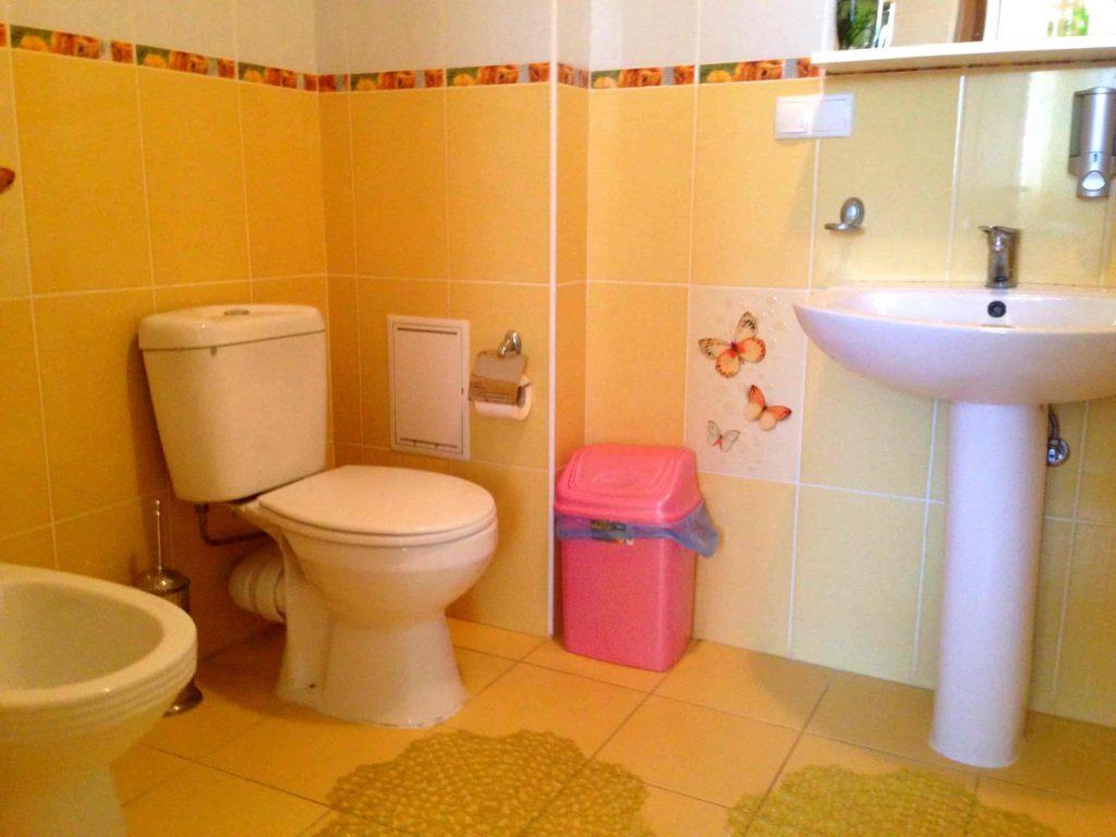 Душевая и туалет
